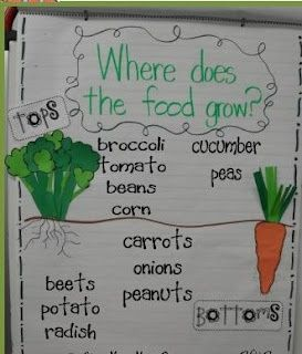 plants - a great visual to go with the book Tops and Bottoms - I would add pictures to go with each of the foods with labels above (tops) and below (bottoms)