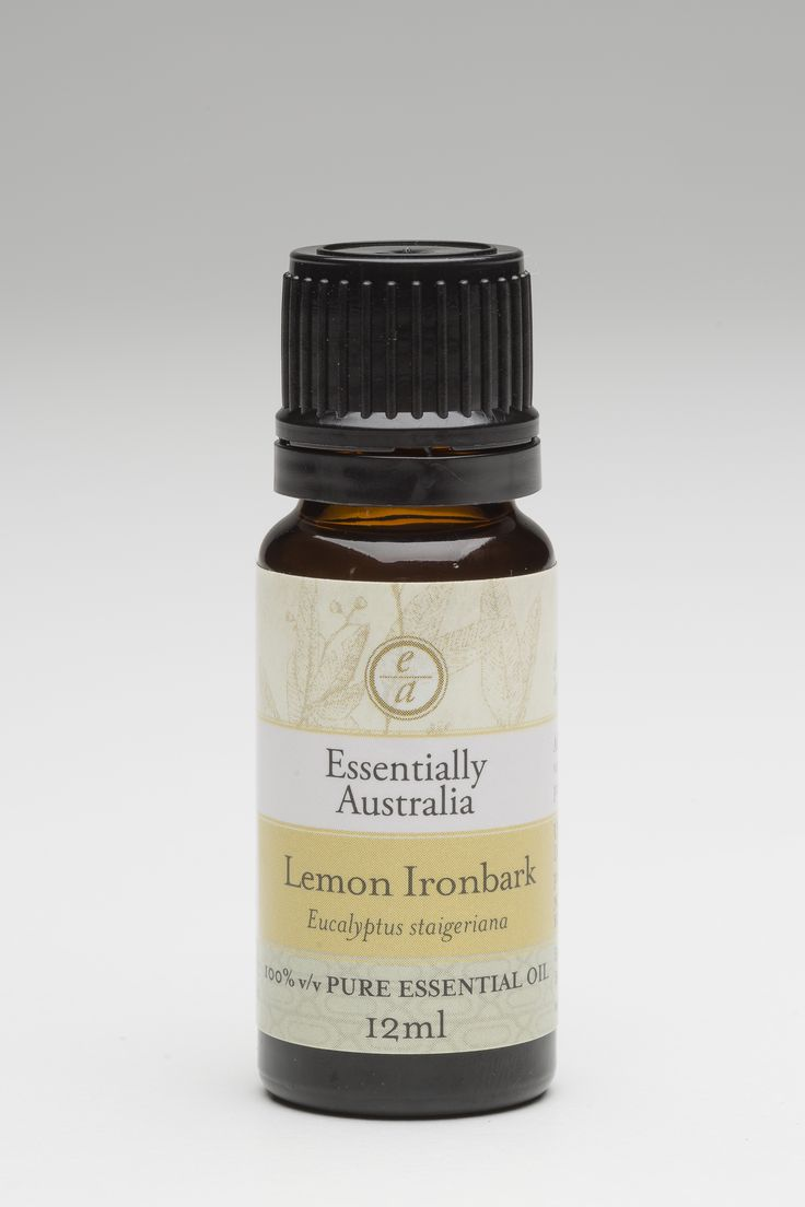 Eucalyptus - Lemon Ironbark (Eucalyptus staigeriana) The most beautiful perfumy/lemon aroma, very, very pleasant. One of our favourites!