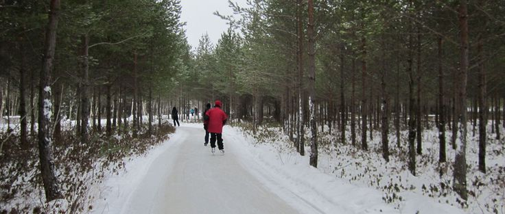 Patinage en forêt : 12 km de piste entre Trois-Rivières et Shawinigan