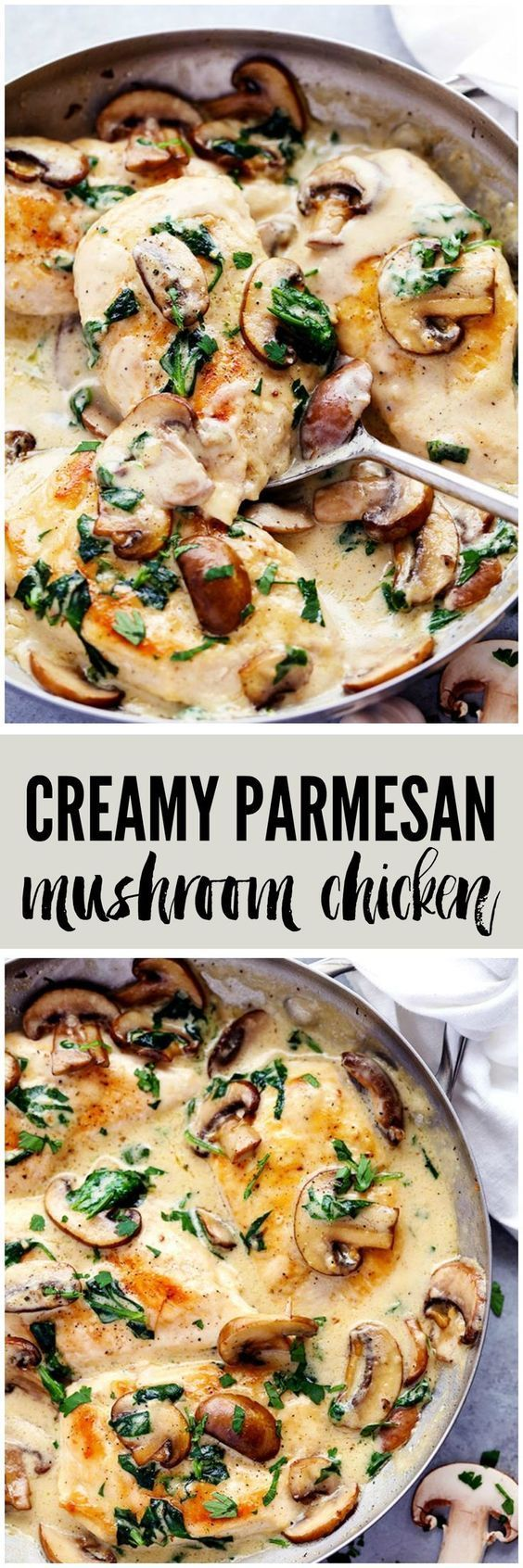 Creamy Parmesan Garlic Mushroom Chicken - can do sans chicken and add the mushrooms if you like. Works for Veggie and meat lovers!