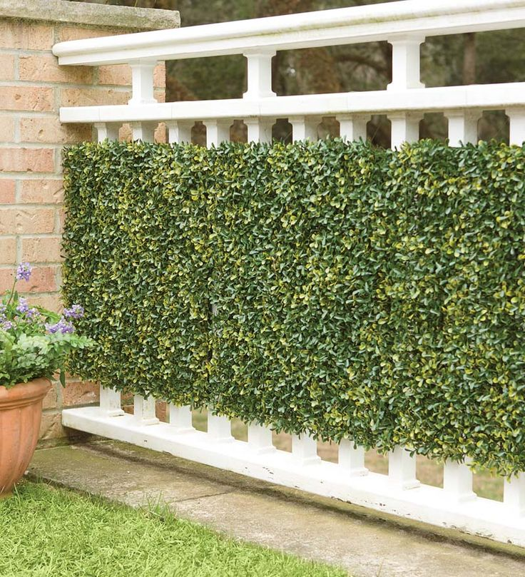 25 best ideas about outdoor privacy panels on pinterest for Outdoor privacy wall panels