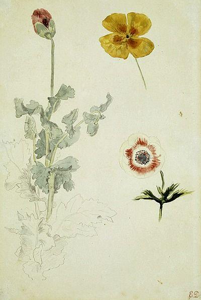 Eugène Delacroix Study of Flowers 1845-50