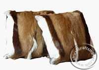 Springbok hide cushions