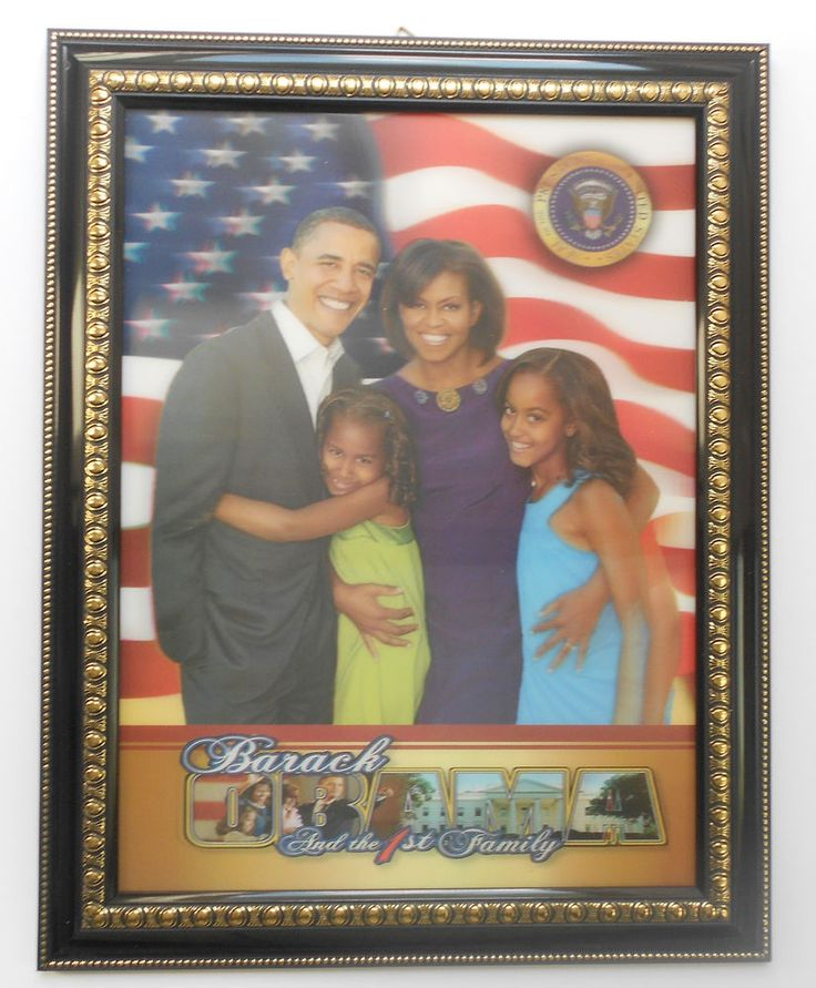 obama 3d quotthe first family portraitquot picture as shown