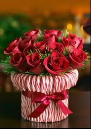 Christmas Bouquet! Wrap a can with candy canes and ribbon then fill with flowers.