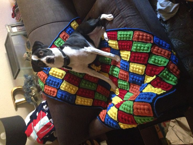 Did it! Lego Blanket crochet afghan: red heart ss, I hook- ch 14, dc 3rd from hook, dc across, ch 1, *2 sc, puff st, ch 2* til end of row, ch 3, dc across. Repeat row 2-3, sc across and around. Attached using sc from both sides, bound with 1 row dc and crab st