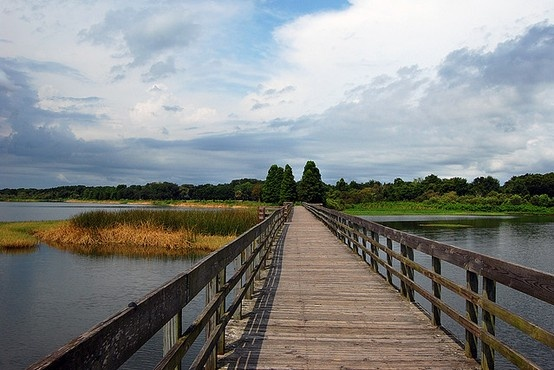 Edward Medard Park & Reservoir In Plant City, Florida