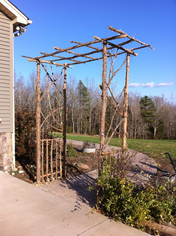 Arbor Made From Cedar Branches Wood Craft Pinterest