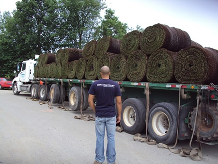 Load of  Sod for Sod Installation