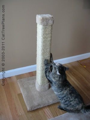 Best 25 cat tree plans ideas on pinterest cat trees for Build your own cat scratch tower