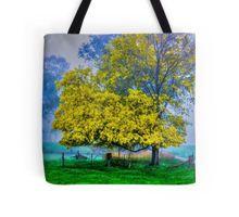 Golden Acacia Wattle Tree in Full Bloom Tote Bag