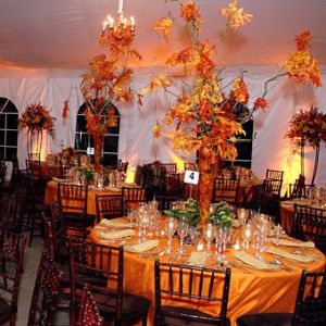Halloween Wedding Theme Idea Centerpieces Trees With Leaves Orange Yellow  Fall Colors Orange And Black