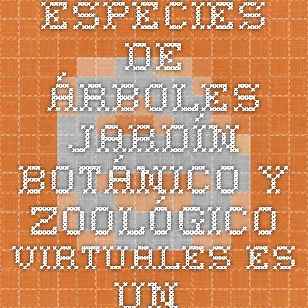 """Especies de árboles JARDÍN BOTÁNICO Y ZOOLÓGICO VIRTUALES Es un ejemplo de inserción de códigos QR en los trabajos para luego realizar  """"exposiciones virtual"""""""