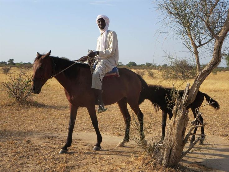 Chadian Arabs often get around on horseback.