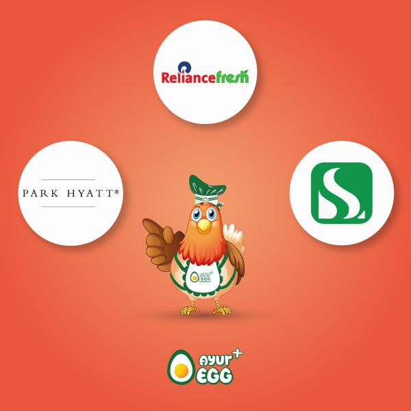 #Hyderabad & #Bengaluru, Grab your box of nutrition rich #AyurEggs at a store near you, its time you start #eatinghealthy & #organic! #AvailabeAt #Stores #OnlineShopping #Supermarket #ShopNow