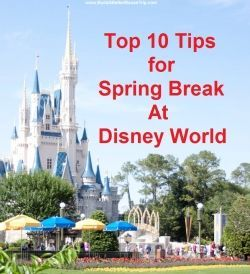 Spring Break is such an amazing time to visit Walt Disney World and we've got some great tips to help you avoid long lines and spend more time having fun on your Disney vacation.  See: http://www.buildabettermousetrip.com/disney-world-spring-break-tips