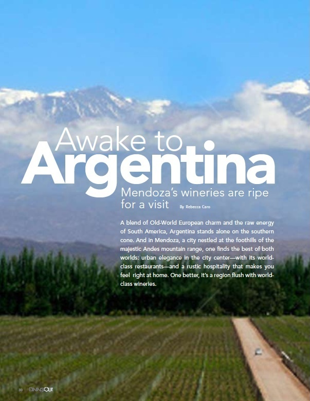 more on mendoza's wine country