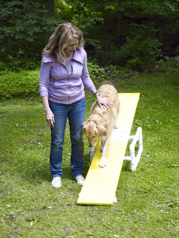 How to Build a DIY Dog Agility Course