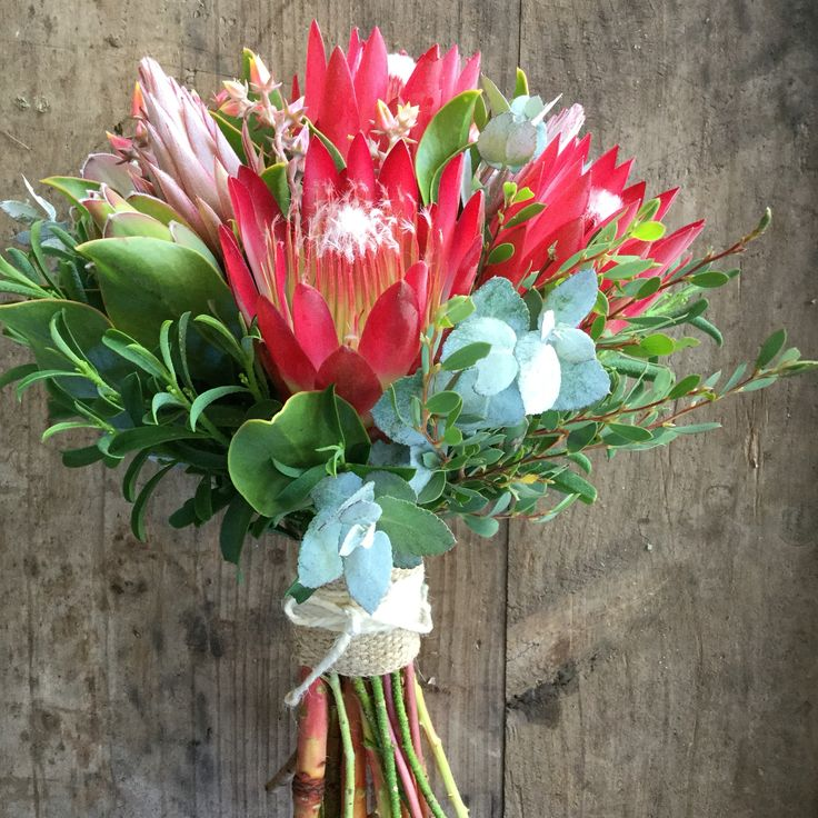 Pretty Repens Protea Bridal Posy how's the colour weddings at Peninsula Wild Flower
