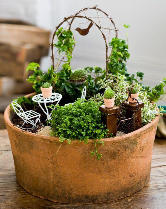mini jardim curitiba:Miniature Fairy Garden Pots