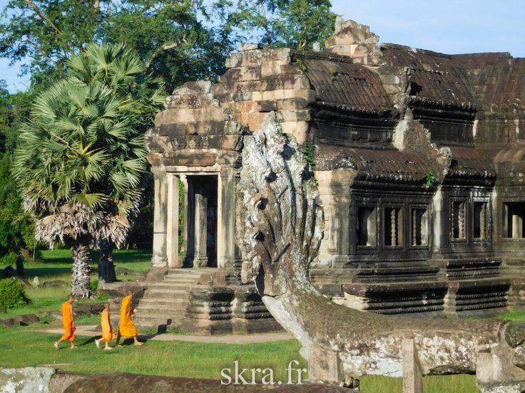 Moines bouddhistes en marche à l'aurore sur le parvis du temple d'Angkor Wat