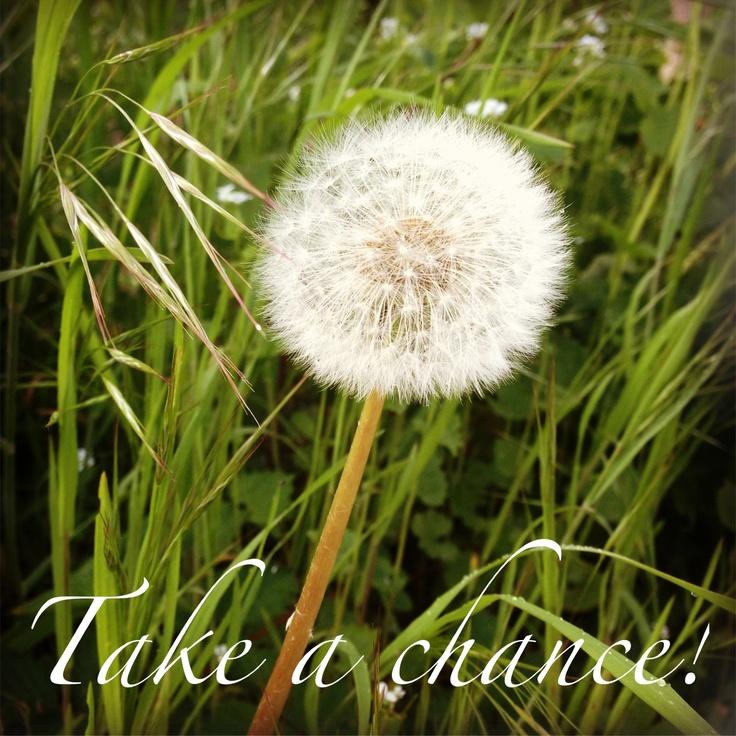 Take a chance - by Anneke / Muisstijl.nl