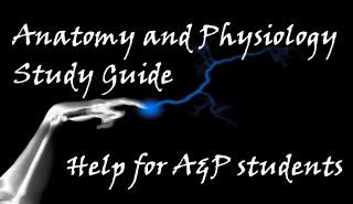 Help for students in Anatomy and Physiology-http://anatomyphysiologystudyguide.com/study-skills/frameworks-for-interest