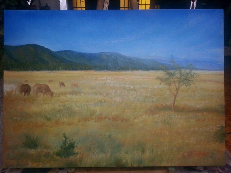 Landscape 50x70cms Valle del Aconcagua