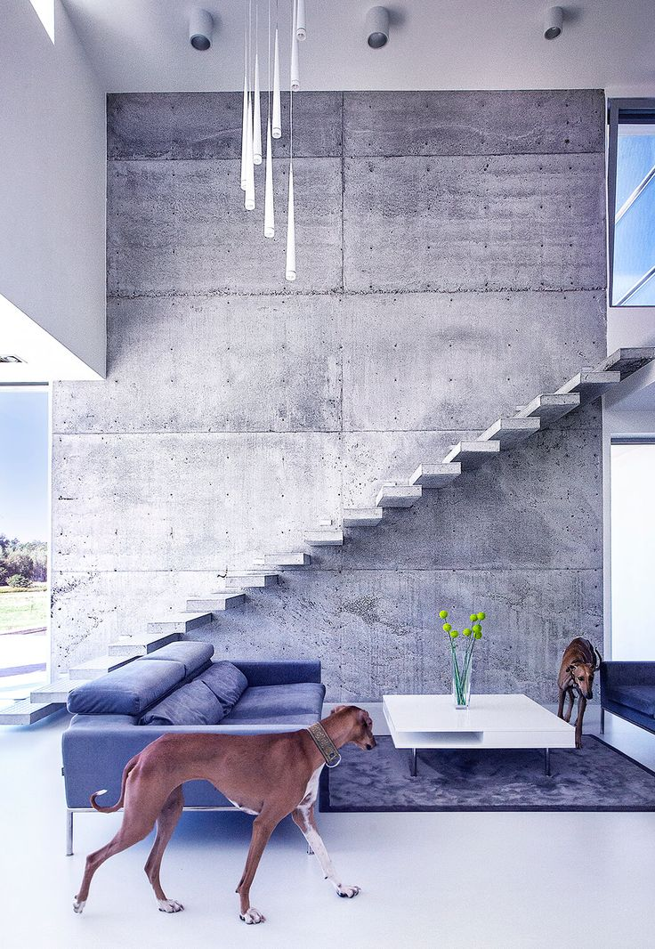 34 best Eco Friendly Home images on Pinterest   House design ...
