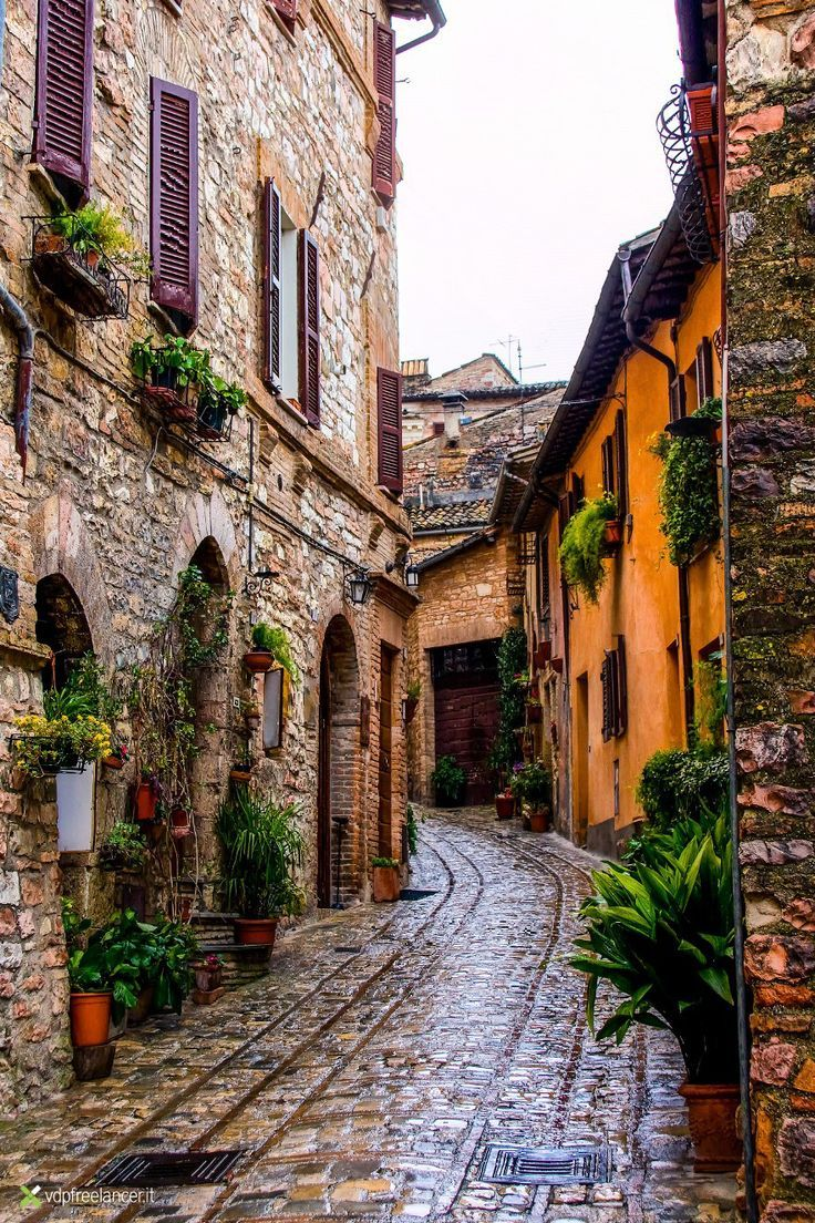 Spello - Italy by Vittorio Delli Ponti ~ Province of Umbria, Italy*