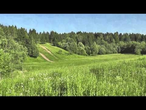 поле - футаж hd - YouTube