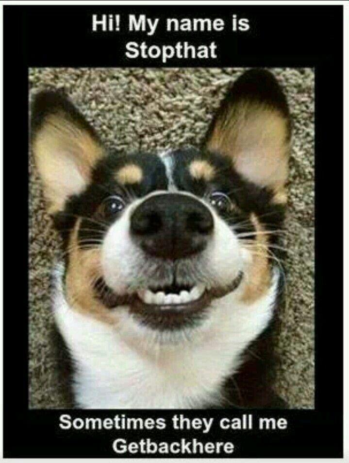",,C'mon! Smile!"""