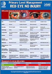 This A2 size poster covers the differential diagnosis and primary level management of red eyes with no injury: conjunctivitis, corneal ulcer, acute iritis and acute glaucoma | Publisher: International Centre for Eye Health, London School of Hygiene & Tropical Medicine.