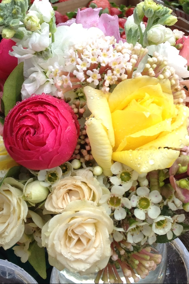 Flowers at Eumundi Markets