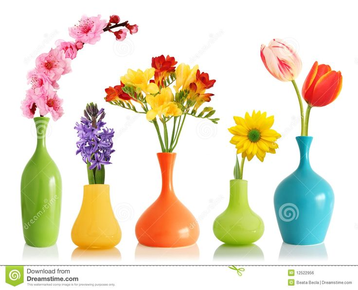 Flowers In Colorful Vases
