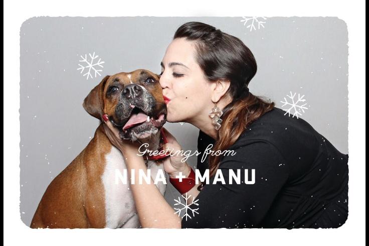 Christmas Video Boxer Dog