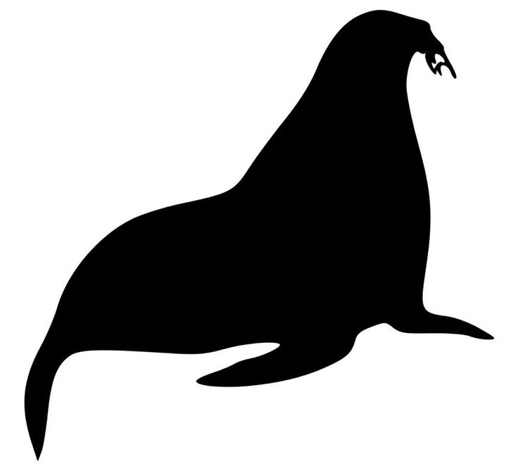 Walrus vinyl decal stickers g2