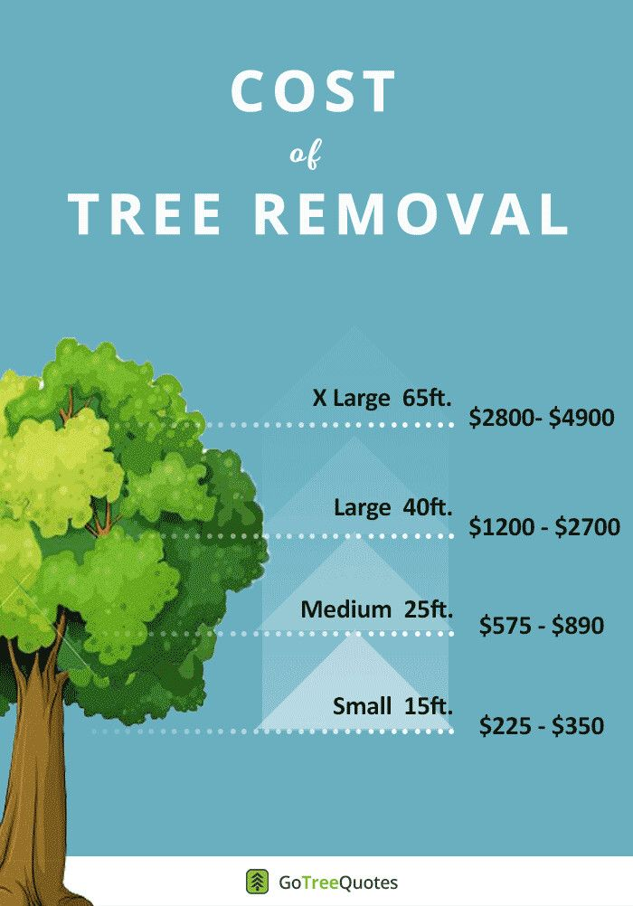 c8517c5b48c75843c63710ecf71d0145 - Edgar's Gardening And Tree Service