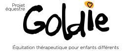 Le Projet équestre Goldie est un organisme sans but lucratif qui a pour mission d'offrir des services d'équitation thérapeutique aux enfants ayant un handicap physique ou intellectuel ou vivant des problèmes d'apprentissage, et ce, au meilleur coût possible.
