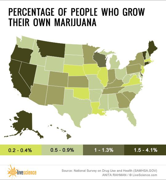 Best Marijuana Infographics Images On Pinterest Marijuana - Smoking rates us map