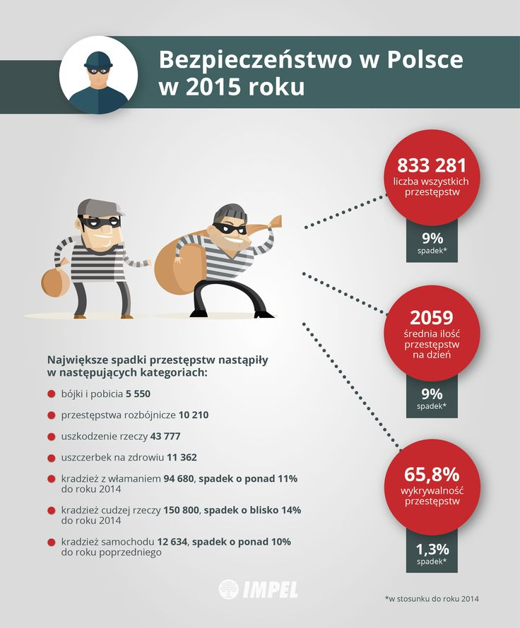 Bezpieczeństwo w Polsce w 2015 roku - Vademecum - IMPEL