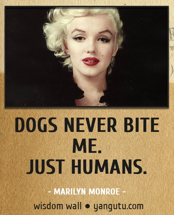 Messed Up Life Quotes: Dogs Never Bite Me. Just Humans,