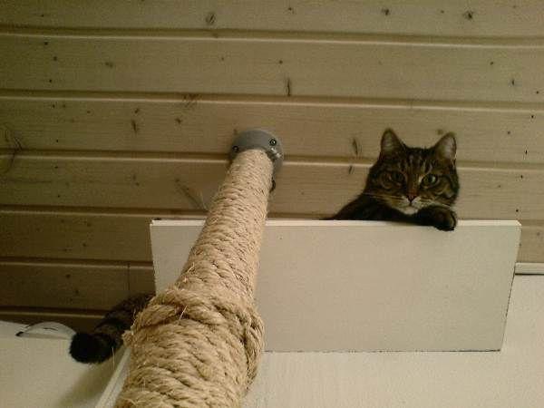I just might do this... (IKEA's STOLMEN support pillar, etc)