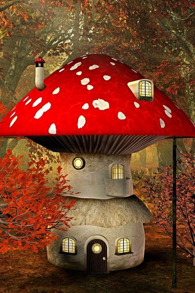 The mushroom house