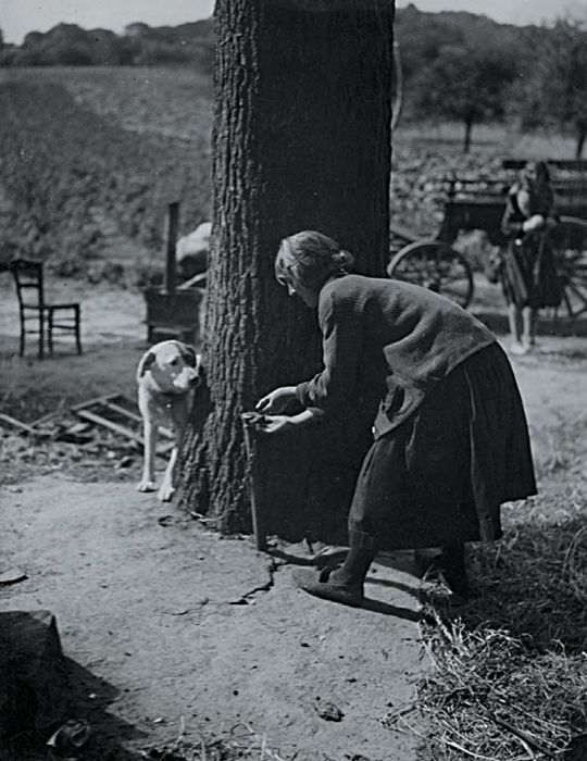 "Andre Kertesz - ""Do They Play Hide and Seek?"" (Girl Ties up Dog to Play)"