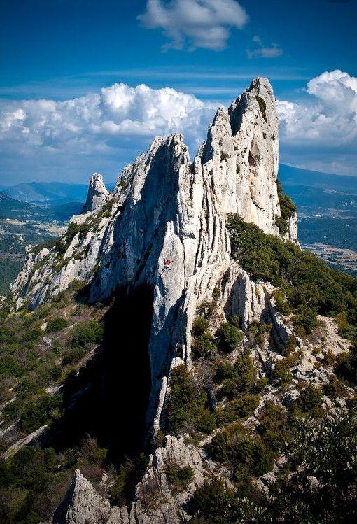 Denteilles de Montmirail, Vaucluse, Provence, France