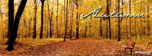 Autumn Facebook Timeline Cover