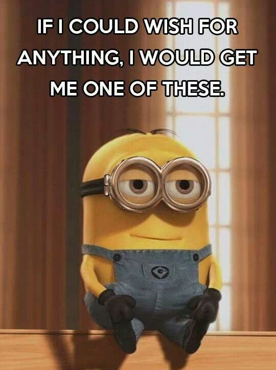 Lotsa minions. They can do my laundry and the dishes, but I promise I will also love them, and let them watch Disney movies on break.