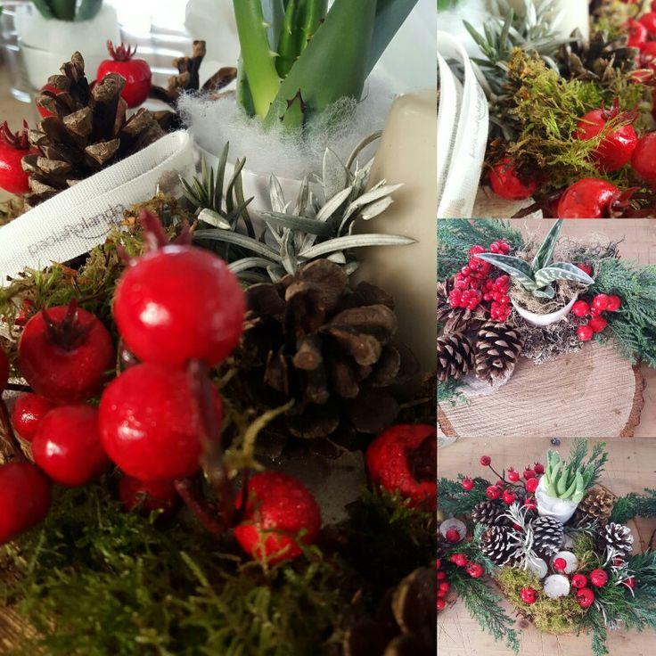 Natale Natura Paola  Rolando