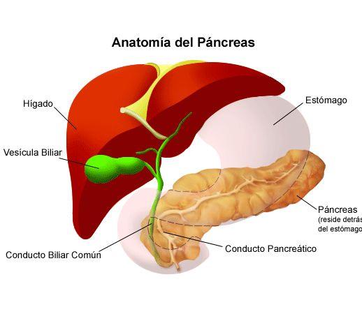 dieta pancreas inflamat